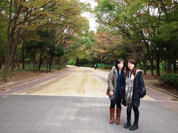 從地鐵站往大阪城途中的這片走道很美!