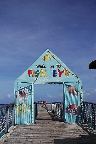 """今天唯一的行程就是來""""FISH EYE"""" 魚眼公園!!!!"""
